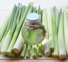 Lemongrass is Innovative Medical Therapies June Essential Oil